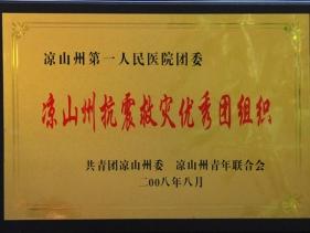 凉山抗震救灾优秀团组织