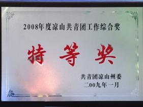 2008年度凉山共青团工作综合奖